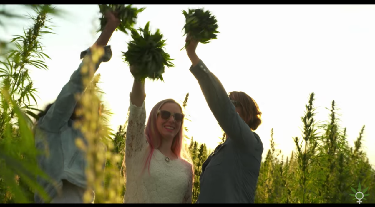 women of weed film 1