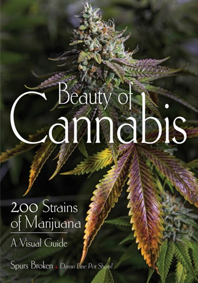 beauty of cannabis book